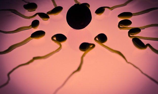 Ist dein Ovulationstest immer negativ?