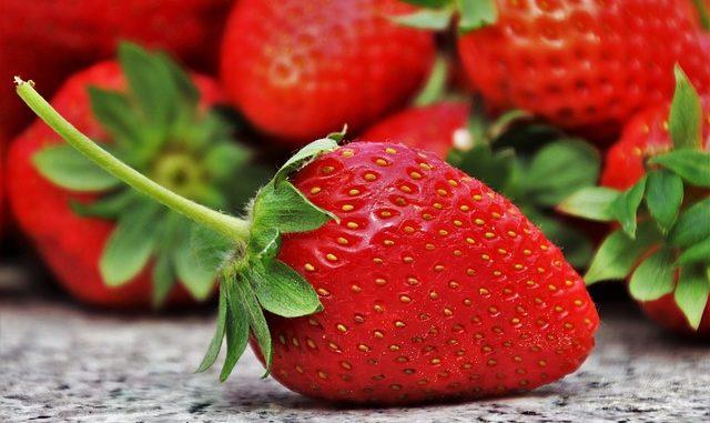 Der Verzehr von Erdbeeren in der Schwangerschaft
