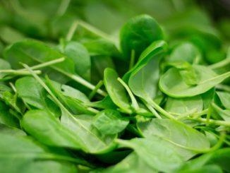 Infos zur Ernaehrung in der Schwagerschaft: Ist Spinat in Ordnung? Ja oder Nein?