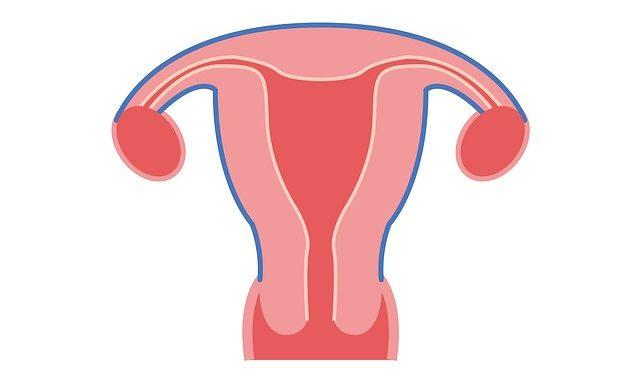 Cytotec in der Schwangerschaft